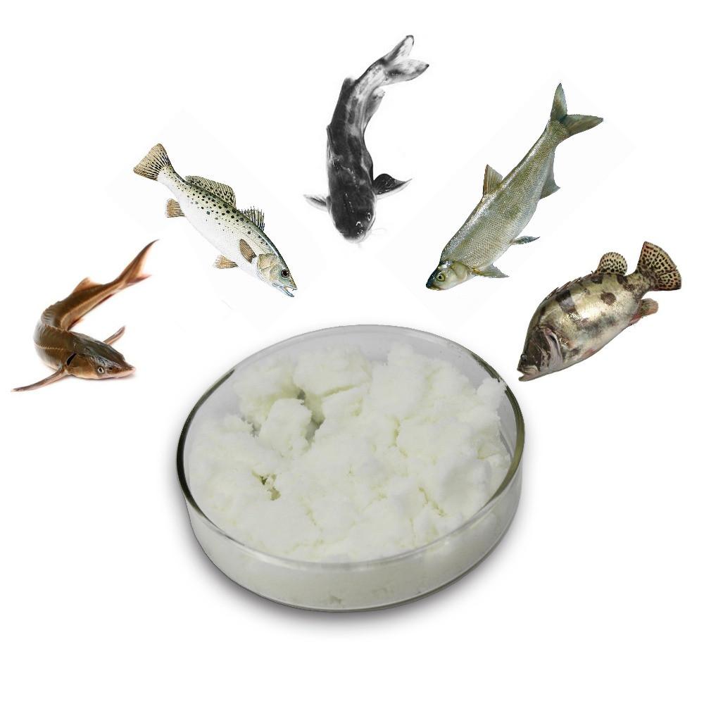 Aquaculture  DMPT