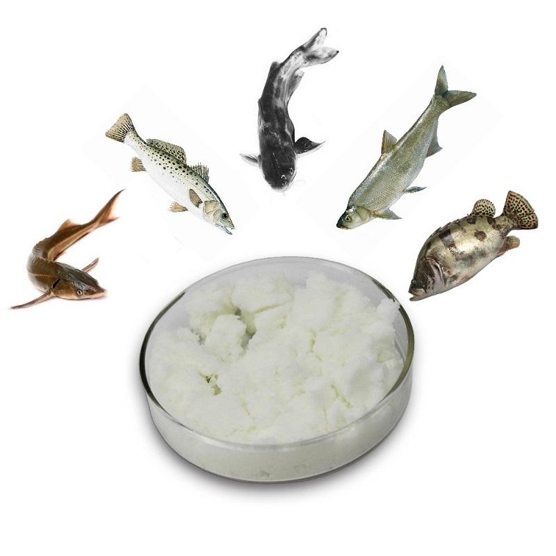 Nutrition Fish Additive TMAO