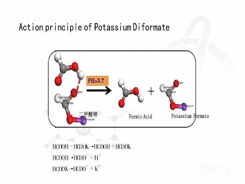 Potassium diformate1